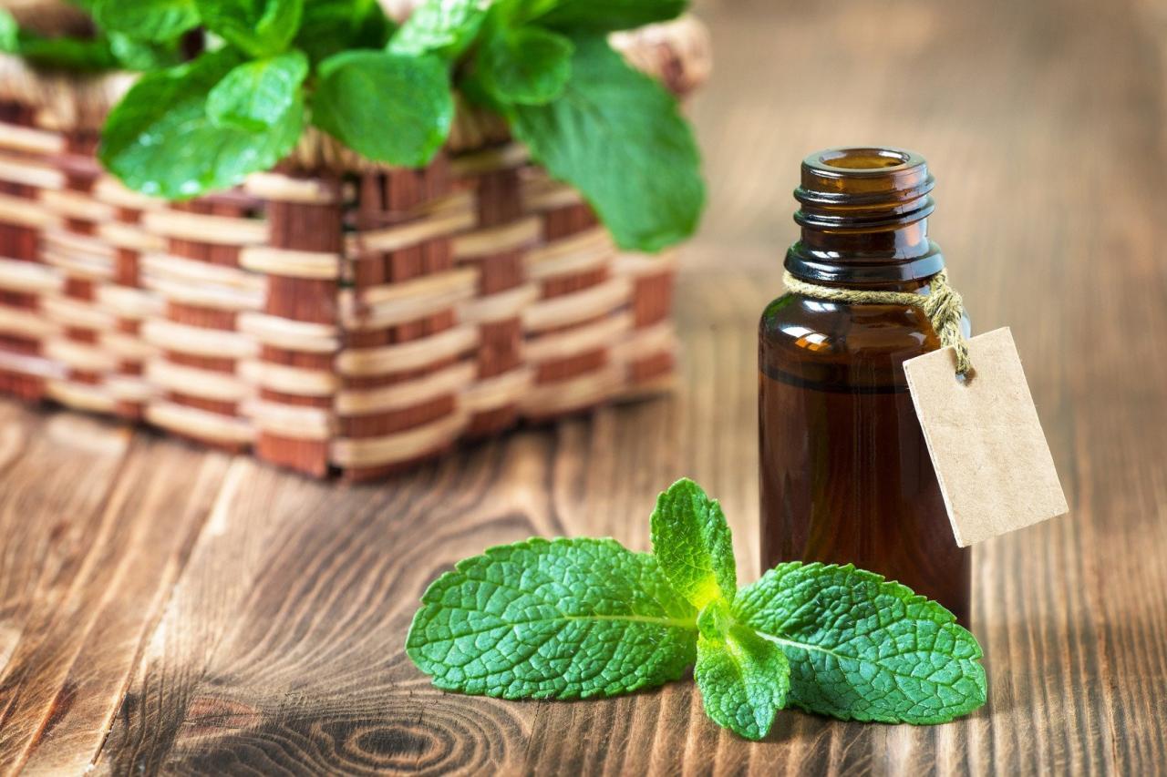 Протестировано и проверено: вдыхание запаха этой травы может подавить ваш аппетит