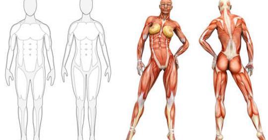 5 лучших продуктов для наращивания мышц, которые необходимо есть после тренировки!