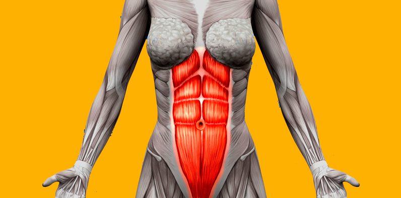 8 лучших упражнений для того, чтобы сделать живот плоским