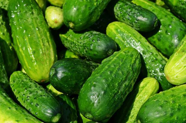 10 супер полезных для здоровья свойств огурца
