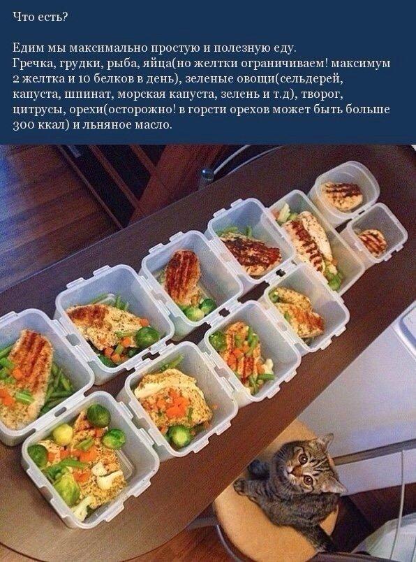 Правила питания простым языком!